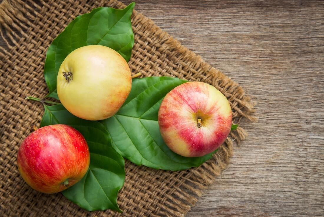 Apples' high fiber and water content means they'll make you feel full with less calorie intake....ideal for weight loss